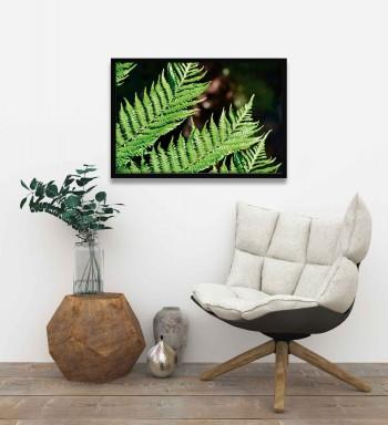 Quadro Fern V de We Studio