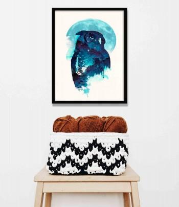 Quadro Midnight Owl de Robert Farkas