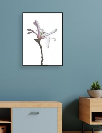 Quadro Drawn Flower I