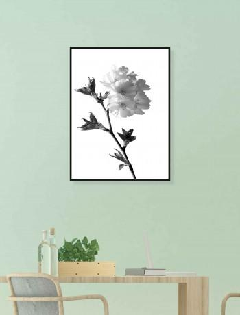 Quadro Drawn Flower II
