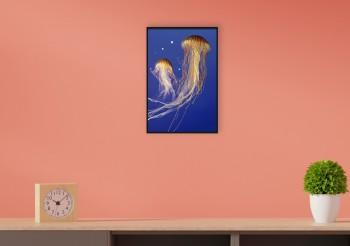Quadro Colored Jellyfish I