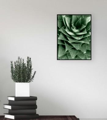 Quadro Pineapple Crown
